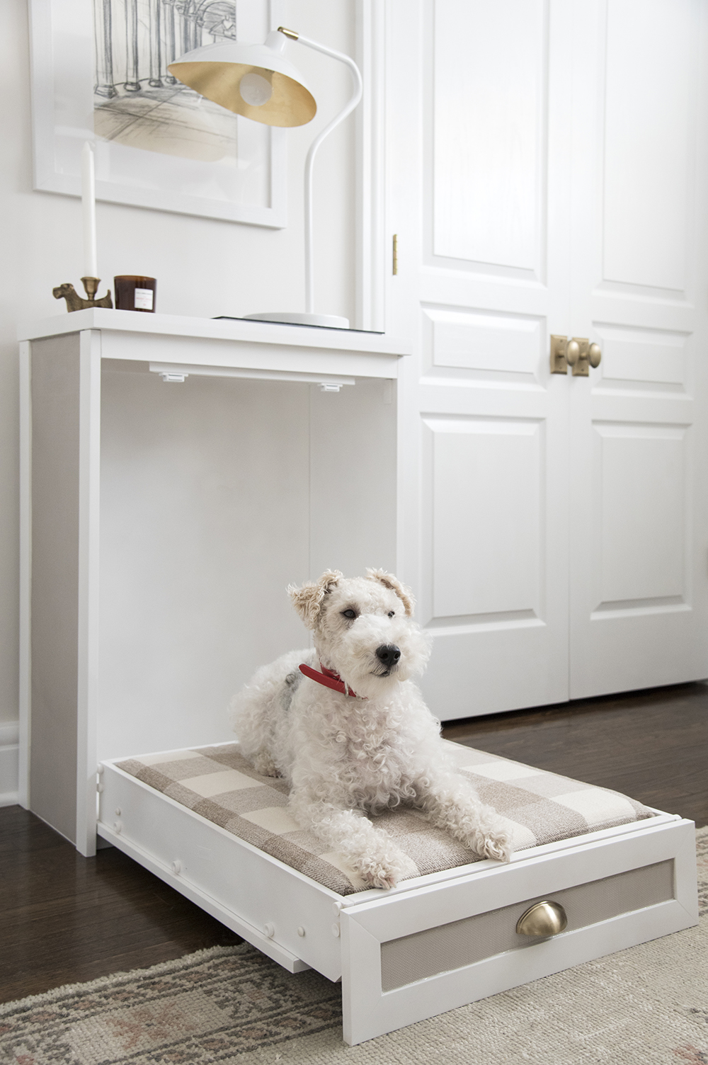 Murphy Dog Bed DIY - roomfortuesday.com