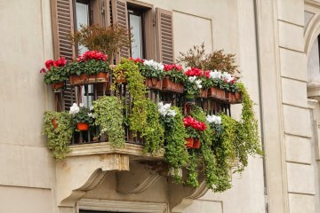 Your balcony design with plants - get an oasis at home