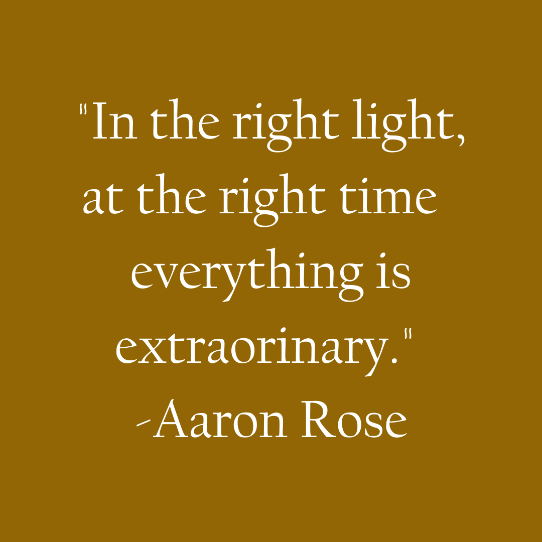 In the right light, at the right time everything is extraorinary -Aaron Rose