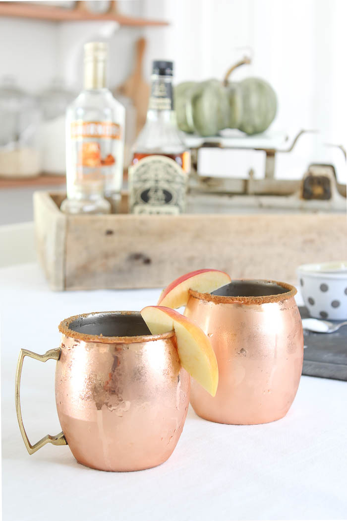Fall Cider Recipe | Rooms FOR Rent Blog