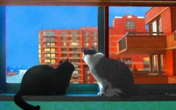 Roosevelt Island's Caring Cat Sitter