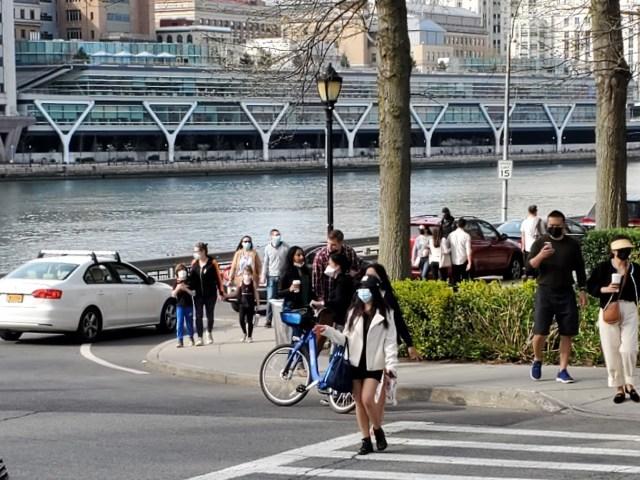 Cherry blossom crowd, North Loop Road, Roosevelt Island