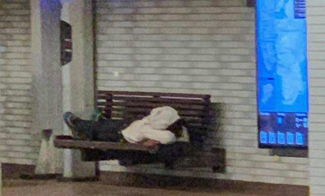 Roosevelt Island Subway Station Napper