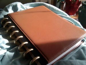 Brown Leather Arc Notebook with gold Levenger rings_20141231_resized