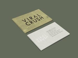 ViralCrush-business-cards-Mockup7-300x225 Professioneel logo ontwerp: in 7 stappen