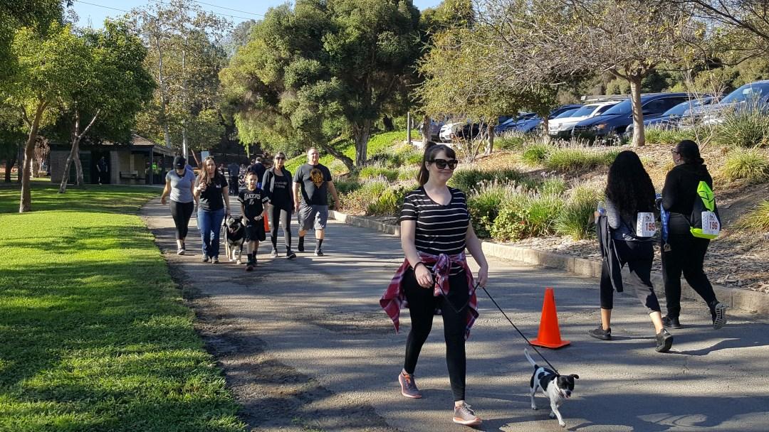 San Gabriel Valley professional dog trainer