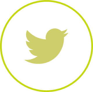 Twitter (c)