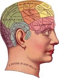 memory in Psychology