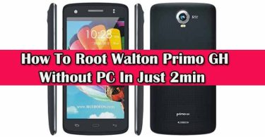 Root Walton Primo GH