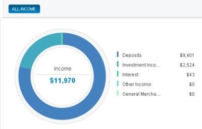 Income Summary
