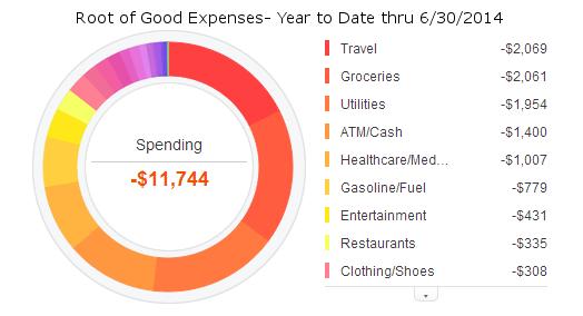 june-2014-ytd-expense