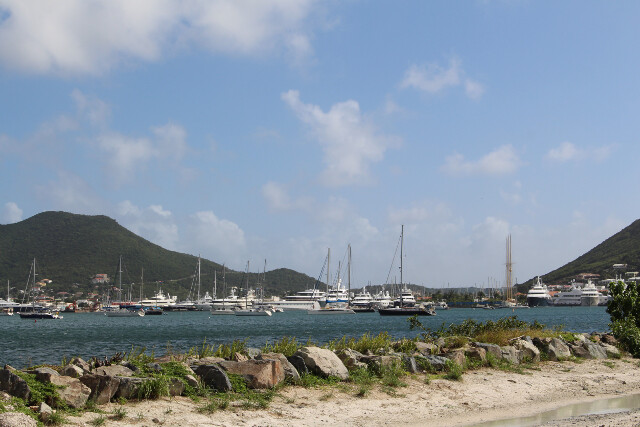All the customers' yachts