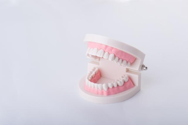 仙台の顎関節症に対して筋膜に治療をする整体
