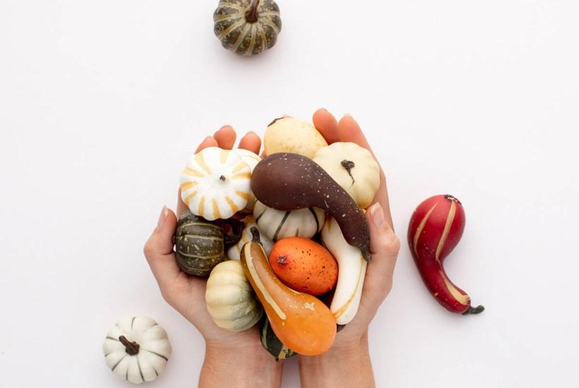 hands holding small pumpkins
