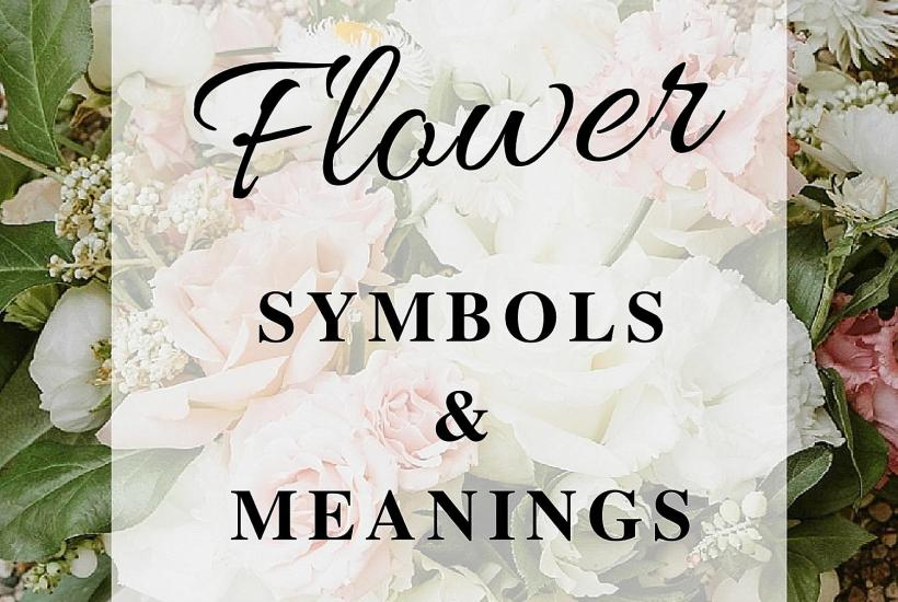 Flower Symbols and Meanings - Ohio Florist