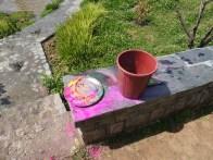 Colored powder + water = FUN!