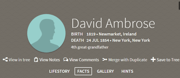 Ancestry Profile Header