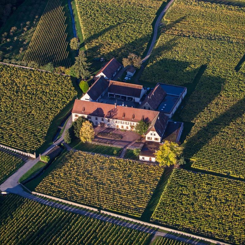 Domaine Weinbach, uma das estrelas da Alsácia