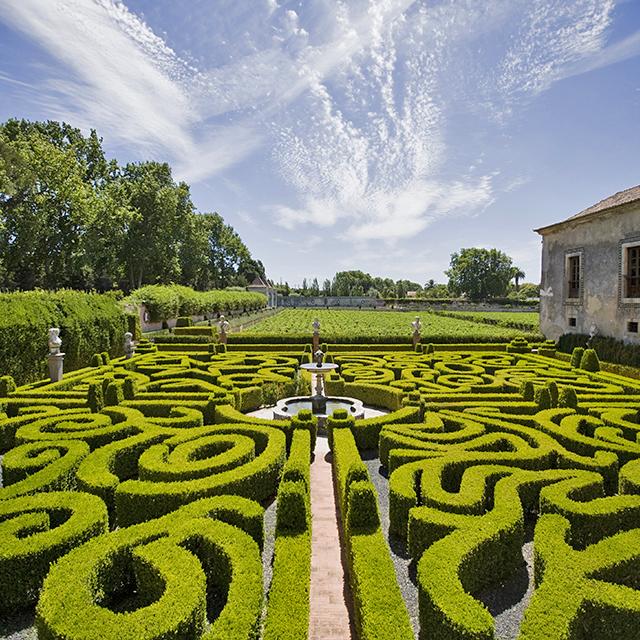 Vinícola Quinta da Bacalhôa