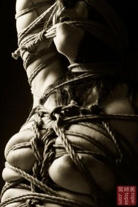 Japanese rope bondage with Beauvoir.