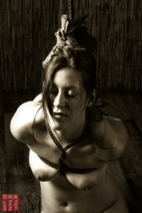 Tightly bound kinbaku bi. Gote shibari.