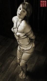 Full body shibari bondage.