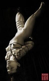 Inverted suspension bondage, futomomo shibari.