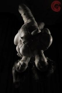 Gorgone and Fuoco double futo-momo suspension bondage.