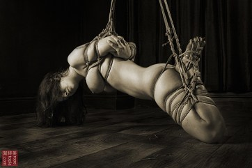 Beauvoir in low shibari suspension bondage.