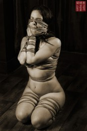Beauvoir hands and face bound Kuzushi shibari