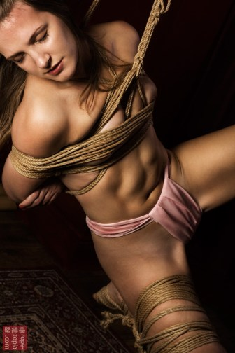 Shibari suspension bondage closeup