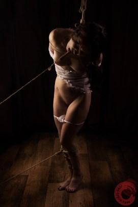Tongue clamped and pulled drooling in shibari bondage, panties down