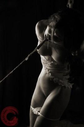Tongue clamped and pulled drooling in shibari bondage
