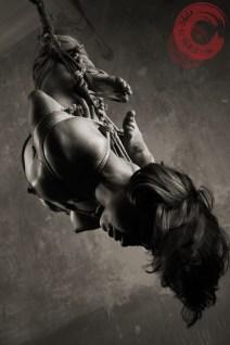 Hung in rope bondage, shibari suspension