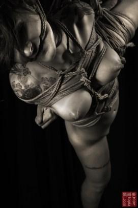 Torture suspension bondage, rope gag.
