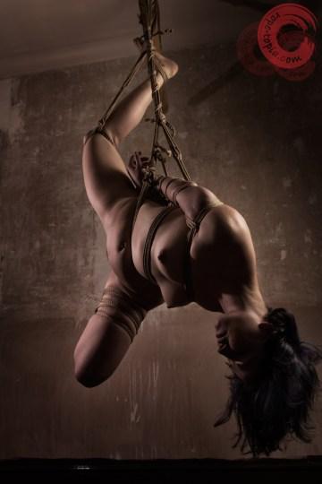 Rope bondage suspension, futomomo.