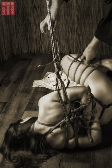 Low suspension shibari under tension being tied