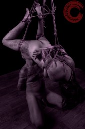 Eating out at home. Both bound in shibari sex.