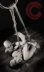 Intimage suspension bondage.