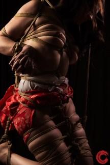 Kinbaku bound hands, breast bondage, leg bondage