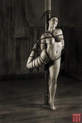 Roswell Ivory Hashira Shibari