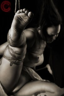 Sophia Shibari bound hard