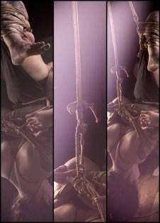 Sophia Shibari tryptich