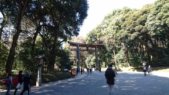 Yoyogi park entrance Tori Gate
