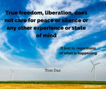 freedom does not care