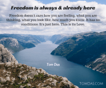 freedom-is-already-and-always-here