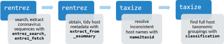 Flow diagram showing functions entrez_search(), entrez_fetch() and extract_from_esummary() from package rentrez, and name2taxid() and classification() from taxize.