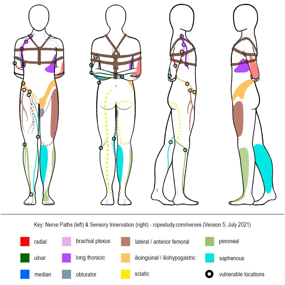 Nerves Box Tie