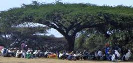 villageMeetingAfrica