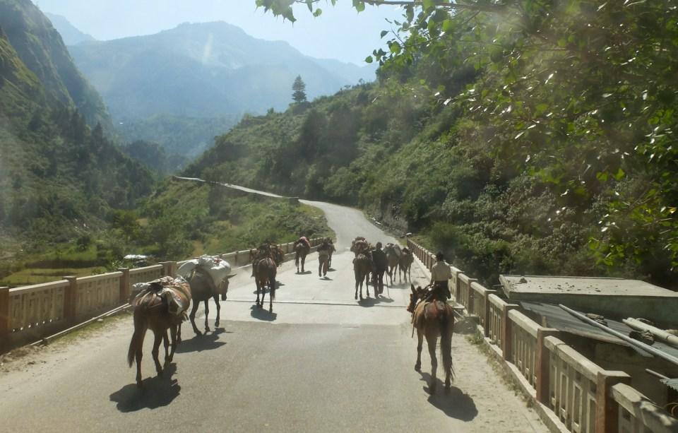 route de Badrinath-24